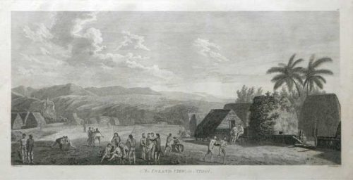 An Inland View in Atool New Zealand James Cook 1784 Engraving