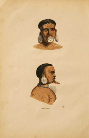 Botocudo Brazil Amazon Tribe original hand colored lithograph