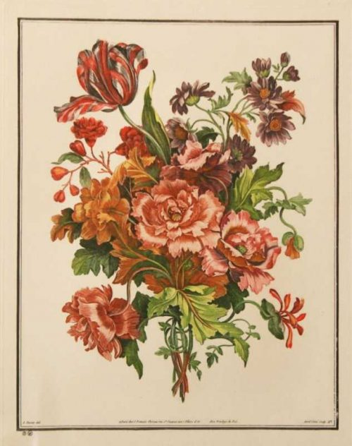 """""""Bouquets No. 27"""" Tessier, Louis Etching Botanical Print. This Antique Print is For Sale"""