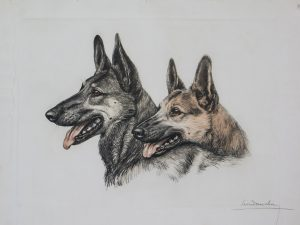 Leon Danchin German Shepard Heads original etching.jpg.