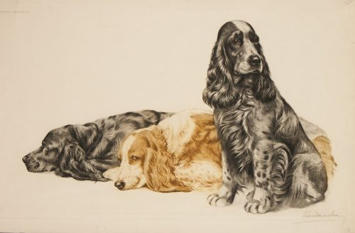 Danchin Three Cocker Spaniels.jpg.