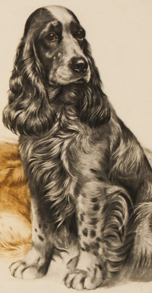 Danchin Three Cocker Spaniels detail 1.jpg.