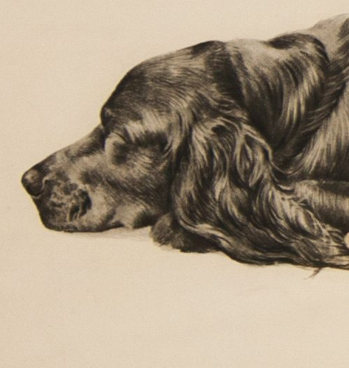 Danchin Three Cocker Spaniels detail 3.jpg.