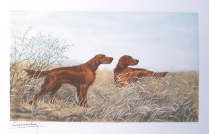 Danchin Two Irish Setters in the Field original etching.jpg.