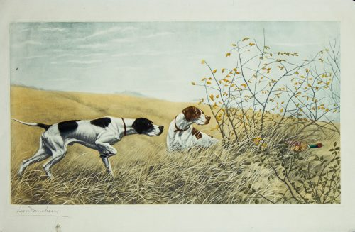 Danchin Two pointers hunting a pheasasnt.jpg.