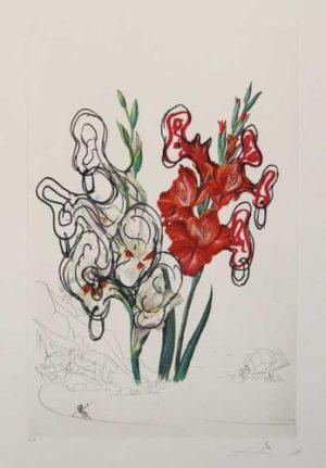 Florals Gladiolus EARS Custa Brava original lithograph Salvador Dali