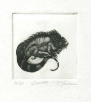 """Iguana"" McGinnis, Christine Aquatint Etching On Sale"