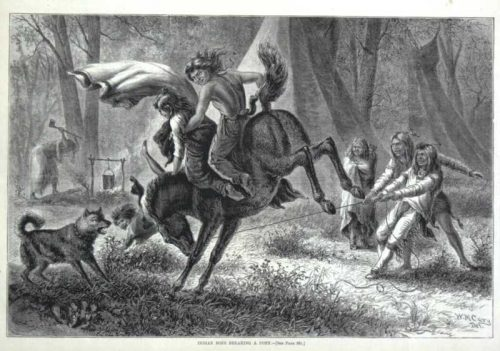 Indian Boys Breaking A Pony Harpers Weekly 1874 wood engraving