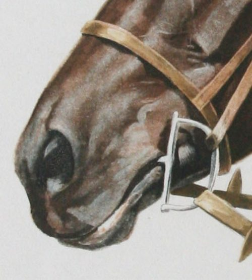 J.Rivet- Horse -Head -detail.jpg.